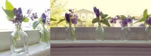 Lilac bottle